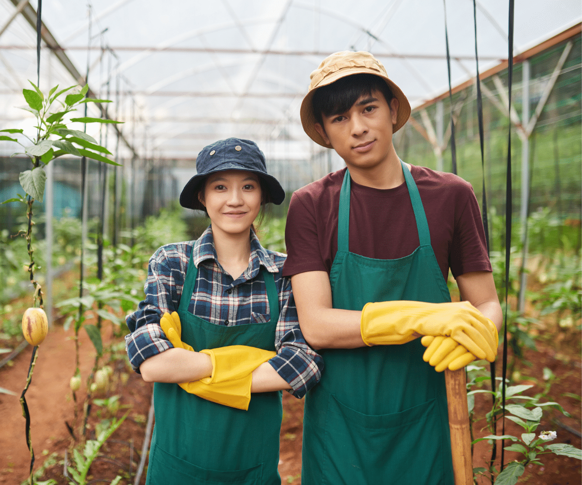recrutare personal asiatic